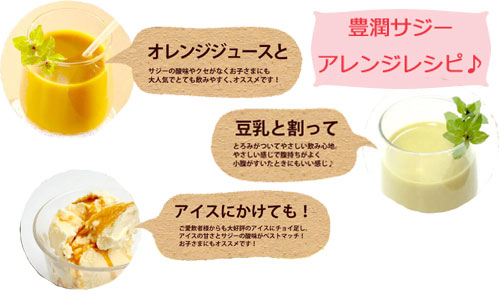 サジーのアレンジレシピ