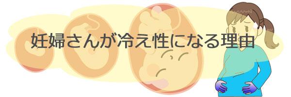 胎児と妊婦